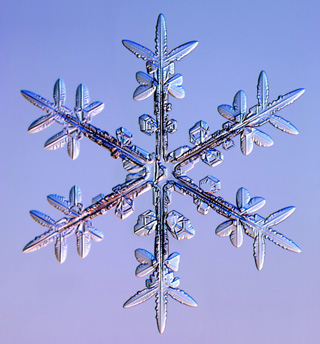 snowflake04