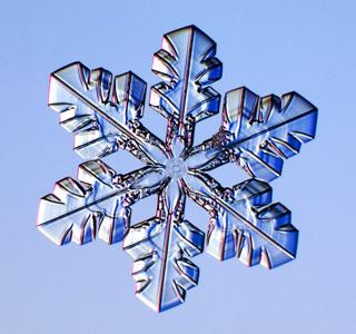 snowflake08