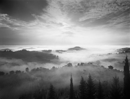 Morning Mist by Ron Rosenstock