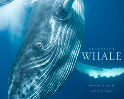 Beautiful Whales book cover