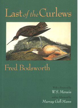 Last of the Curlews book cover