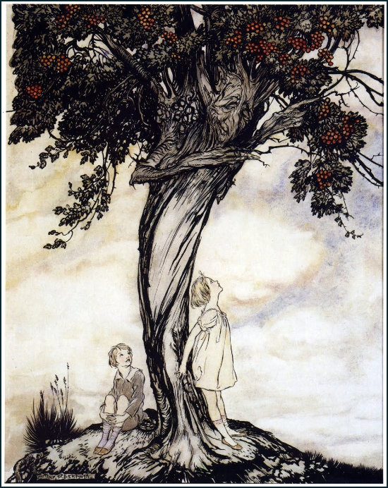 Hawthorn Tree by Arthur Rackham
